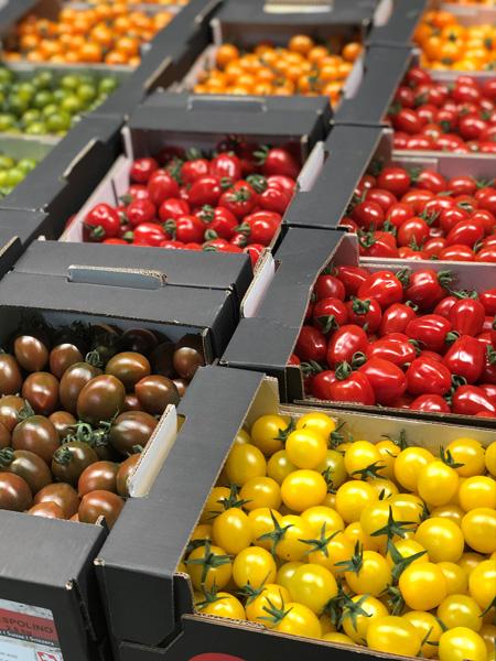 Farbige Cherry und Dattelcherry Tomaten