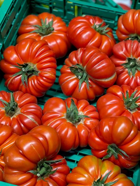 Merinda Tomaten Tessin