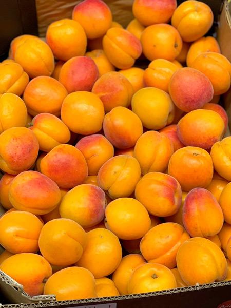 Aprikosen Orangered Spanien