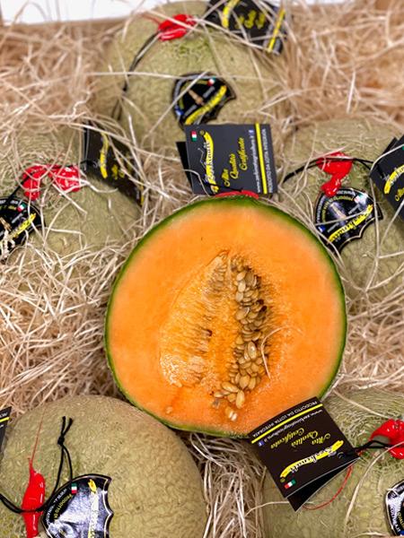 Netz Melonen Zerbinati Italien