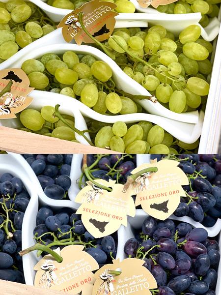 Trauben weiss & blau Italien