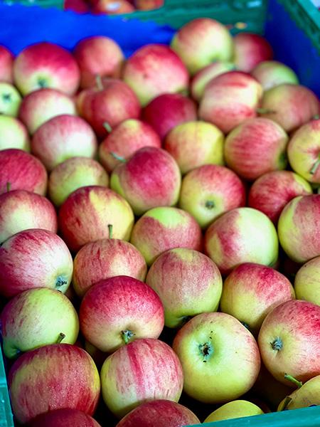 Äpfel aus der Schweiz