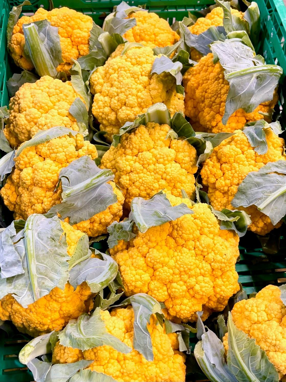Gelber Blumenkohl aus der Ostschweiz