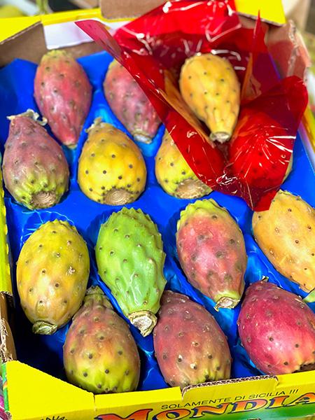 Kaktus Feigen aus Italien