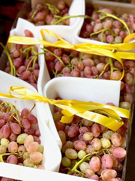 Rosé Seadless Trauben aus Italien
