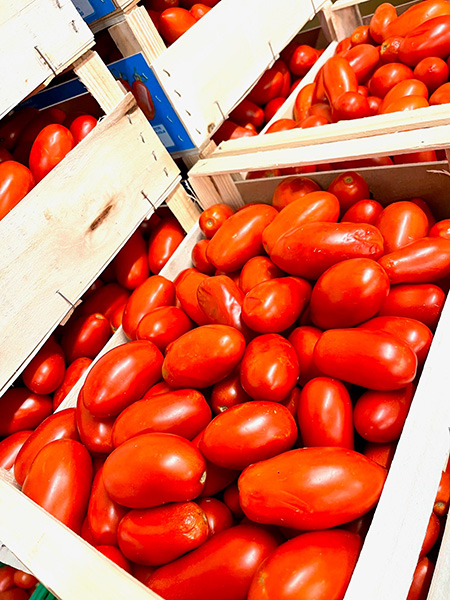 Sugo Tomaten aus Italien