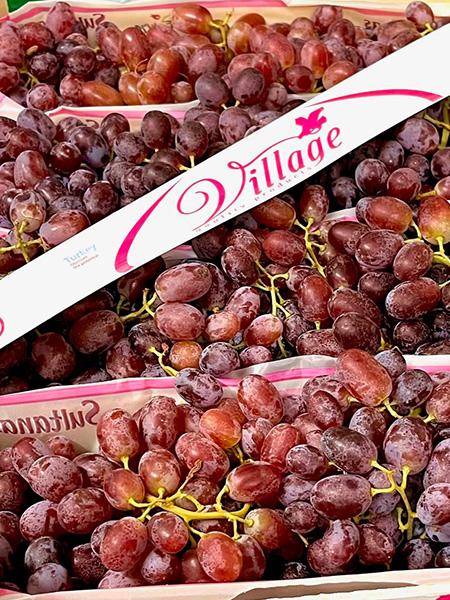 Sultanas Trauben rosé aus der Türkei